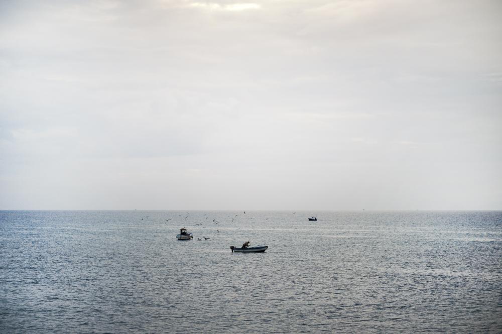 Katharina Pflug  Fotografie & Gestaltung sardine dolci